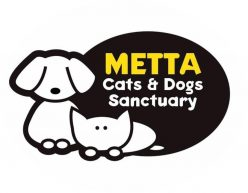 Metta Cats & Dogs Sanctuary